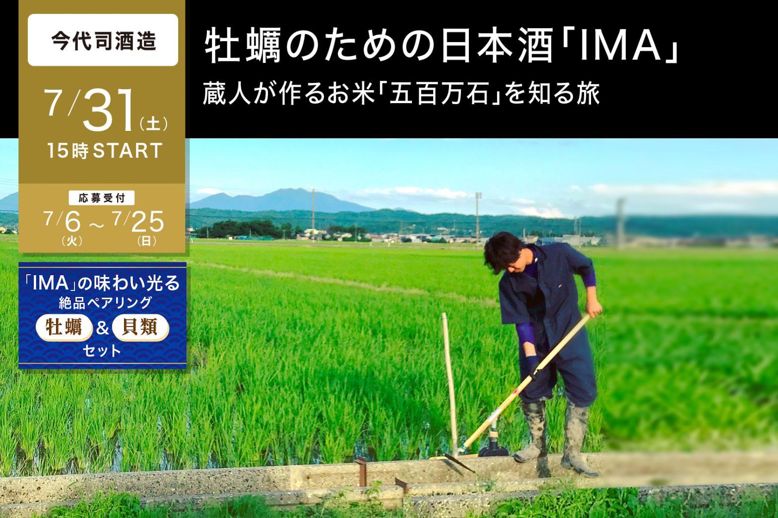 7/31 牡蠣のための日本酒「IMA」蔵人が作るお米「五百万石」を知る旅